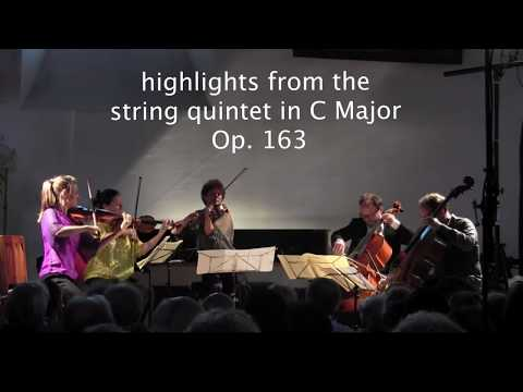 Schubert Quintet Op 163 - Highlights