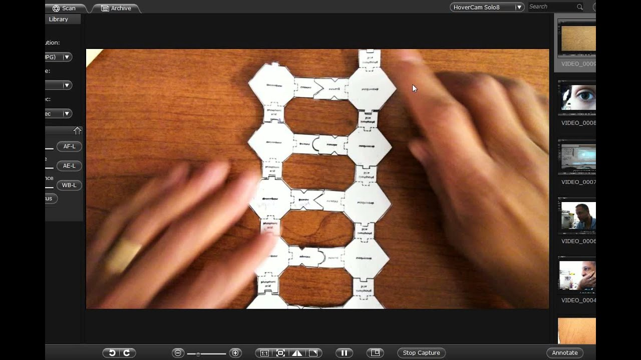 how to make model on dna