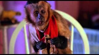 Monkey Trouble Trailer 1994