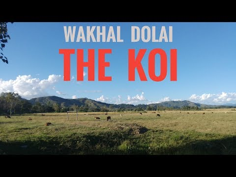 Apple Music ta phanghanba ahanba Manipuri original creator kangu - THE KOI