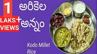 అరికెల అన్నం||Kodo millet rice