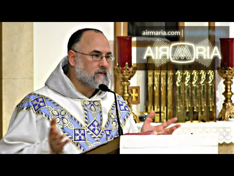Deliberate Venial Sin: Path to Death of the Soul - May 29 - Homily - Fr Alan