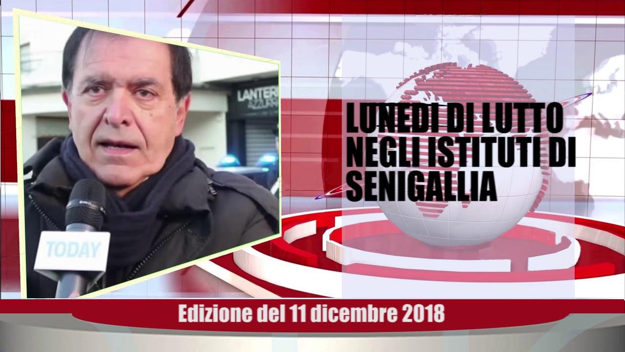 Velluto Notizie Web Tv Senigallia Ed  11 12 2018