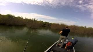 De pesca (los mimbres)