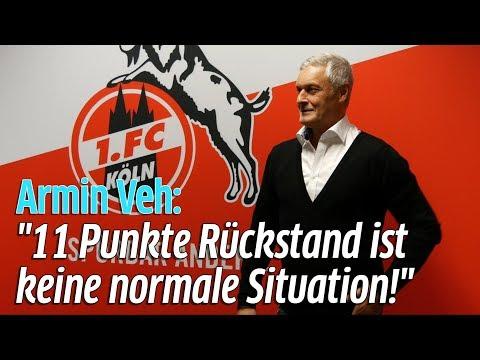 1. FC Köln: Armin Veh neuer Geschäftsführer Sport