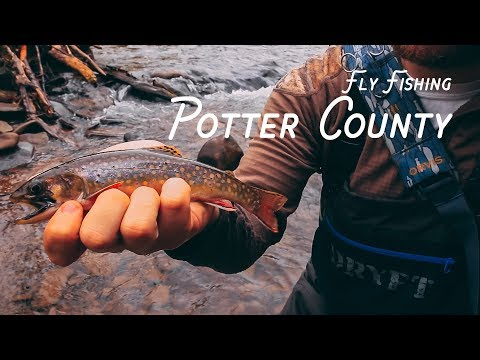 Fly Fishing For Brookies   Potter County, PA
