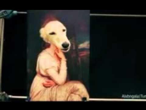 Картинки животными, смешные гифки собак