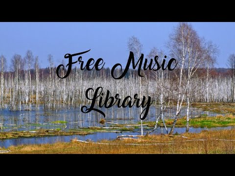 royalty-free-music-library-♫-brooker's-blues---audionautix