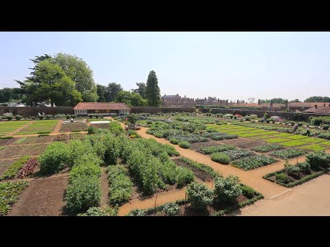 the-kitchen-garden-at-hampton-court-palace