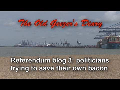 Referendum Blog 3 - politicians saving their own bacon