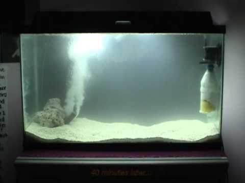 DIY - Water Bottle Power Filter for Saltwater