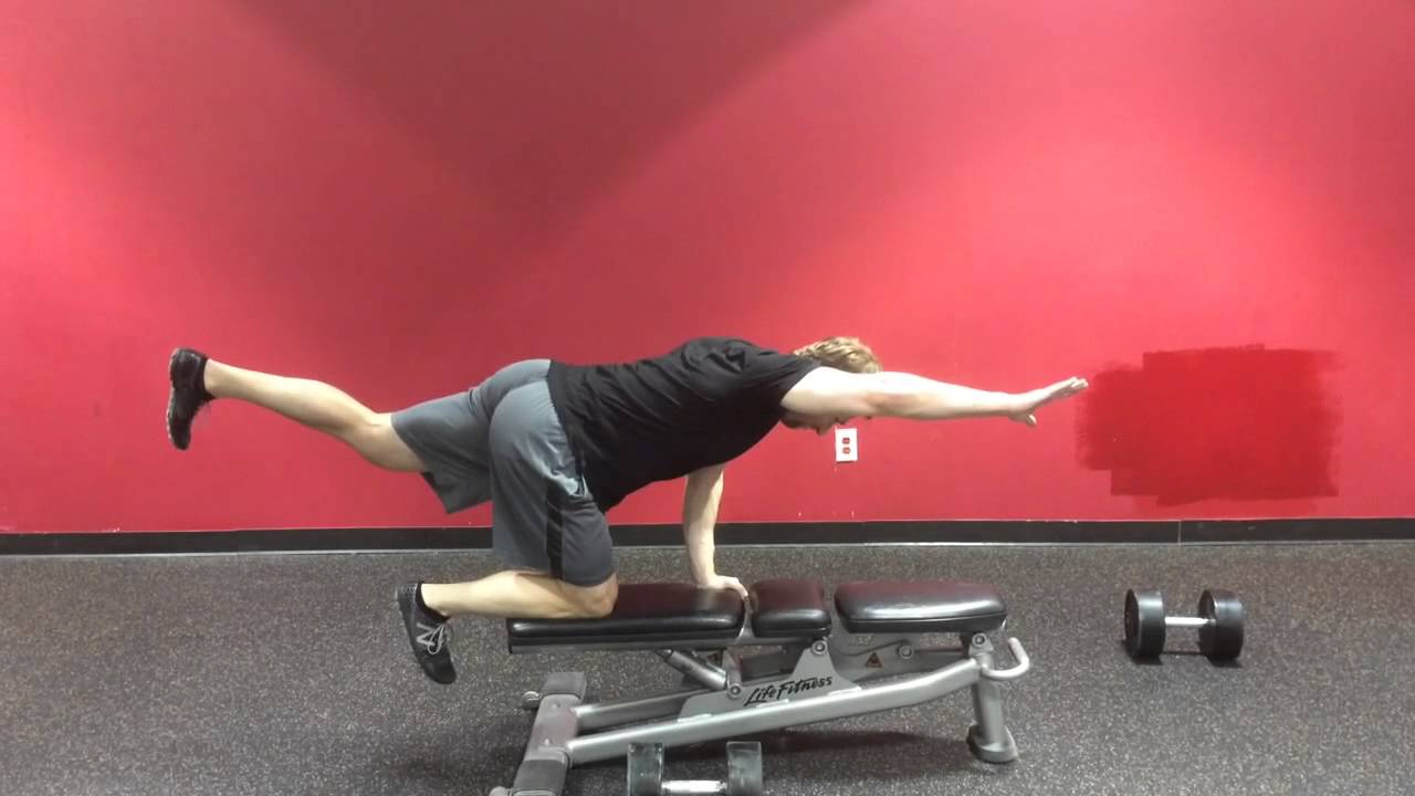 Benefits of the Quadruped (Bird Dog Exercise) — Advanced