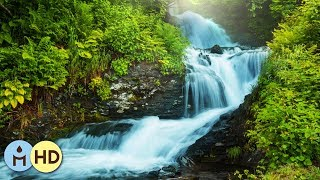 3 HOURS Relaxing Music with Babbling Brook Nature Sounds Meditation ❦806
