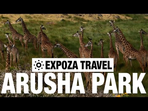 Arusha Park Vacation Travel Video Guide