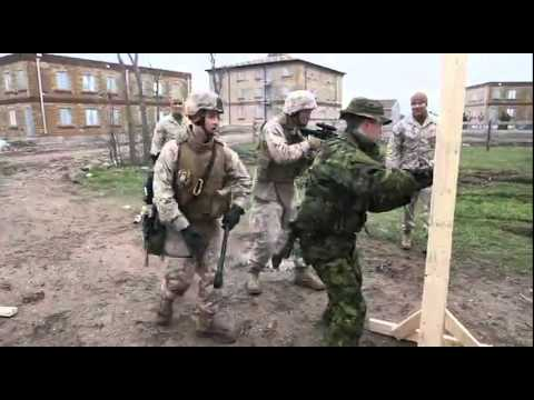 Marines exchange infantry skills with Canadian forces