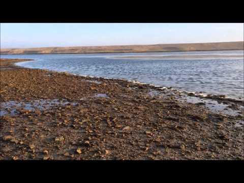 WW2 Beach Metal Detecting Day 1 (44) UK