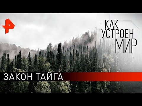 """Закон тайга. """"Как устроен мир"""" с Тимофеем Баженовым (07.10.19)."""