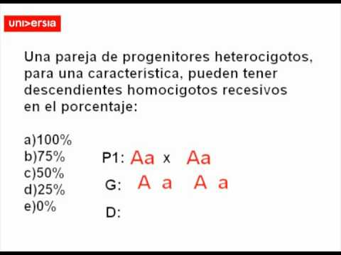 Preuniversia - Homocigotos recesivos PSU Biología