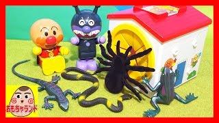 アンパンマン てさぐりBOXからクモ ヘビ カエル トカゲ 生き物いっぱい おもちゃランド thumbnail