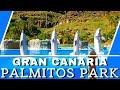 Palmitos Park, Maspalomas, Gran Canaria Dolphin, Parrot, Birds of Prey Show