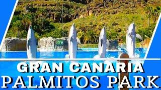 Palmitos Park, Maspalomas, Gran Canaria - Dolphins, Parrots, Birds of Prey, Exotic Birds Show