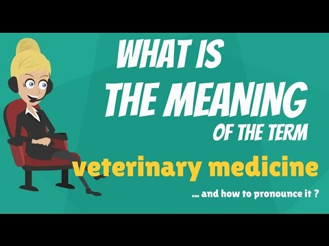 What is VETERINARY MEDICINE? What does VETERINARY MEDICINE mean? VETERINARY MEDICINE meaning
