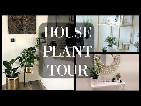House Plant Tour | Indoor Plants 2018❤️