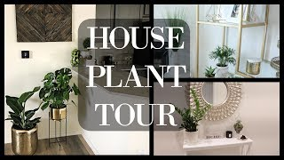 House Plant Tour | Indoor Plants 2018❤️