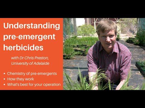 Understanding pre-emergent herbicides