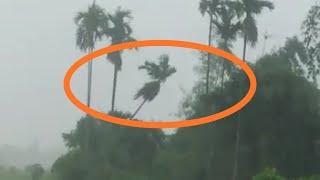 गय गुगाजोबबाय दैबाना | Horengpur Village Flood, Kokrajhar District, Bodoland Territorial Council