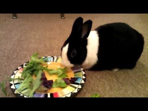 Marusya and her breakfast
