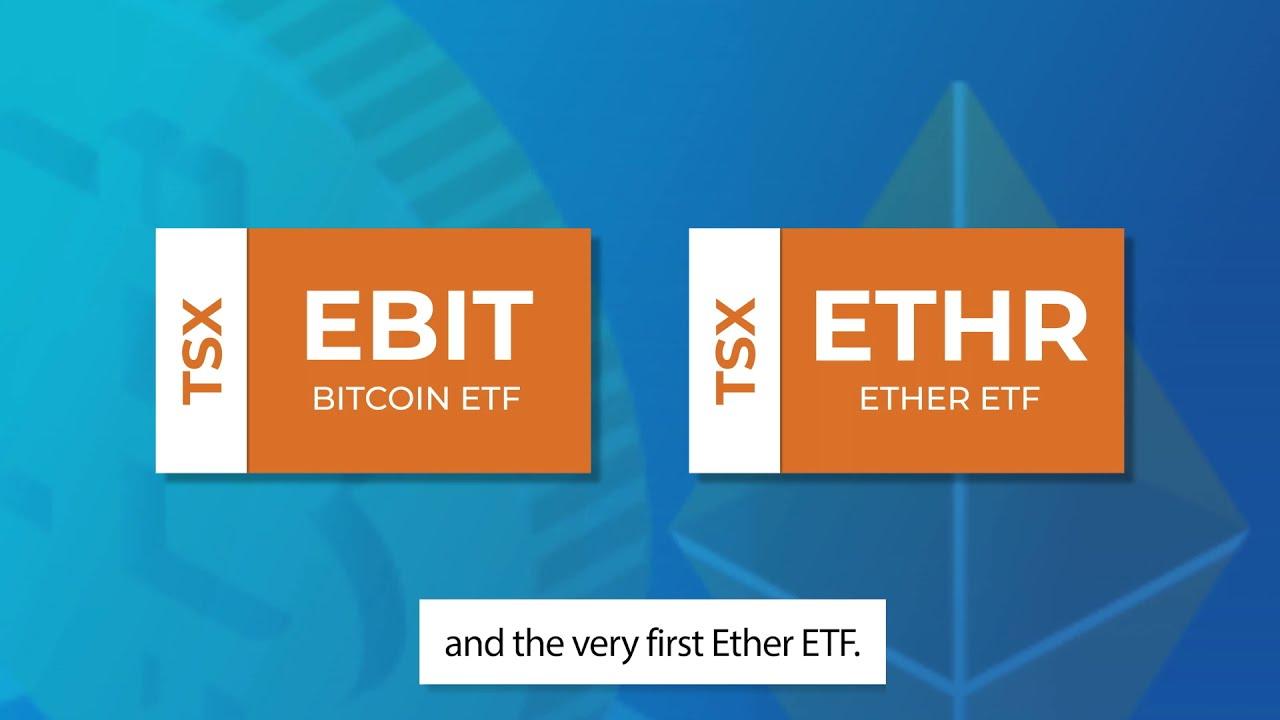 binäre optionen testsieger investition in bitcoin tsx