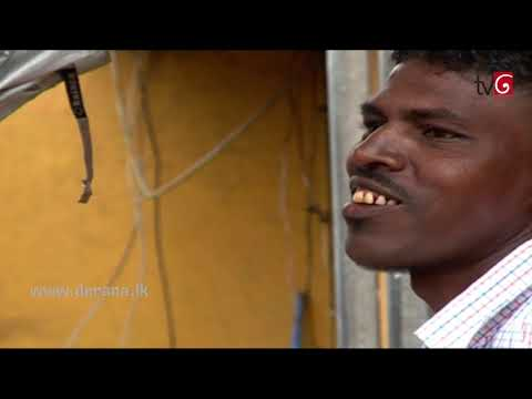 My City | Episode 15 - Cobbler Shoes, Colombo
