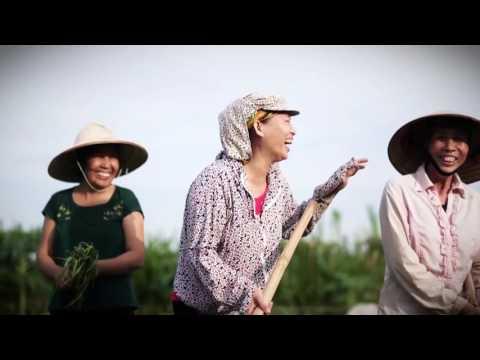"Trailer ""Feeding Hanoi"" - VECO"