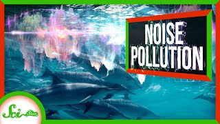noise-pollution-is-a-bigger-deal-than-you-d-think