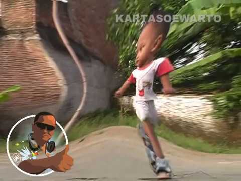 Kucing Garong - Dangdut Disco (Kalibagor 2008)