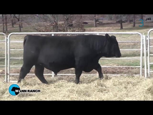 Wann Ranch Lot 3