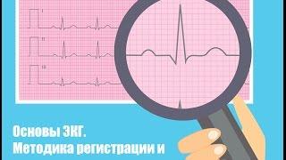 Основы ЭКГ. Электрофизиология сердца, подготовка пациента и расположение электродов