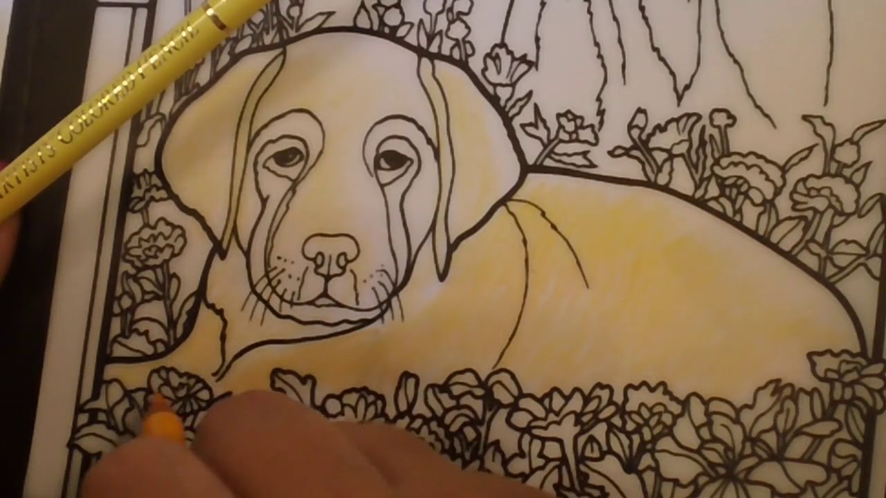 Color Gab Coloring With Holbeins In Dog Stained Glass Book Letsgetanimal