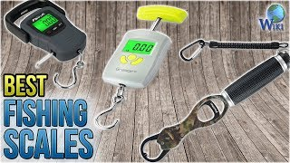 10 Best Fishing Scales 2018