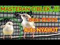 Masteran Ciblek Bikin Emosi Dijamin Auto Nyahut  Mp3 - Mp4 Download