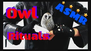 ASMR initiation to the inner circle owl rituals