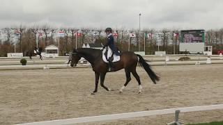 Juliette RAMEL SWE Grand Prix CDI Zeeland 2018 BURIEL K.H.