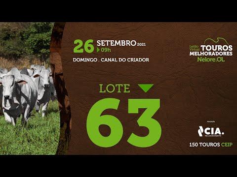 LOTE 63 - LEILÃO VIRTUAL DE TOUROS 2021 NELORE OL - CEIP