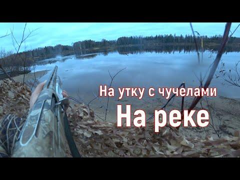 Охота на утку с чучелами. Осень 2019.Река Вычегда.