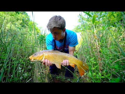 Fishing with bread for hungry topwater carp ch 3 youtube for Fishing with bread