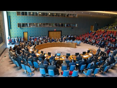 Security Council: Upholding the United Nations Charter (8699th meeting)