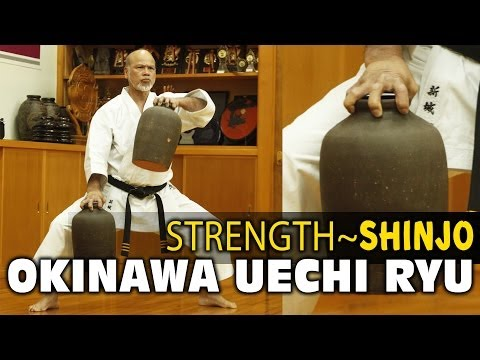 UECHI RYU - Shinjo SANCHIN RESISTANCE