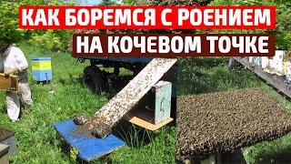 Борьба с роением пчел Несколько простых способов