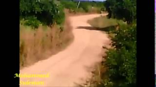 ARC - Oryx Energies Rally of Tanzania 2014